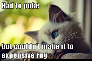 puke cat