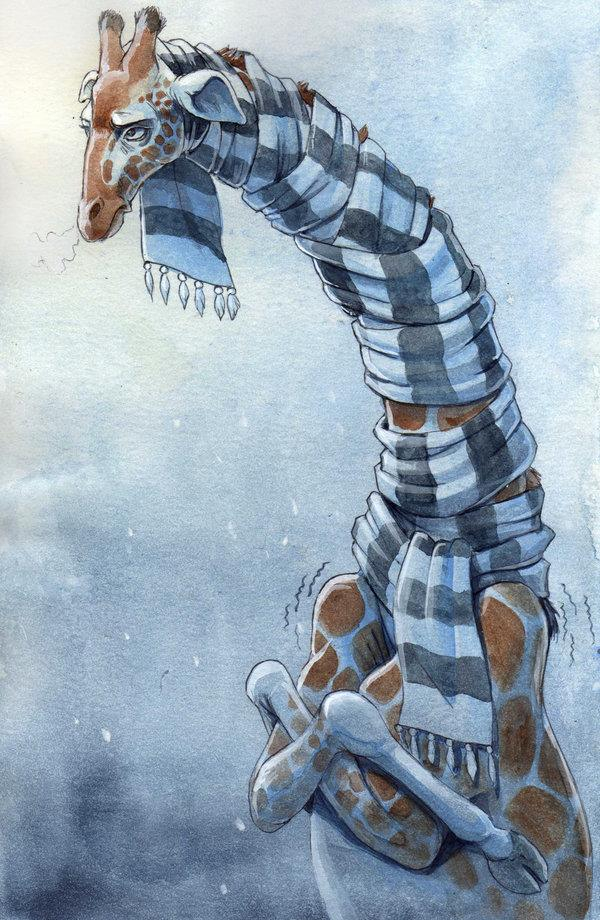 giraffecold