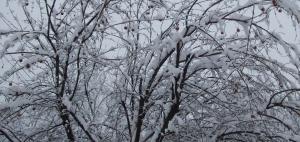 neige 013