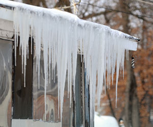 northern icicles