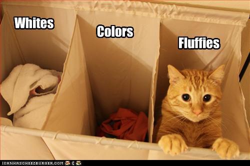 catlaundry
