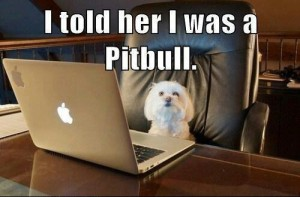 online-dating-dog-300x197