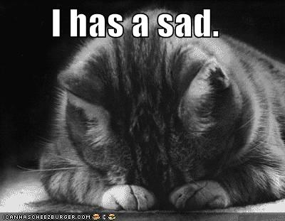 lolcat-sad