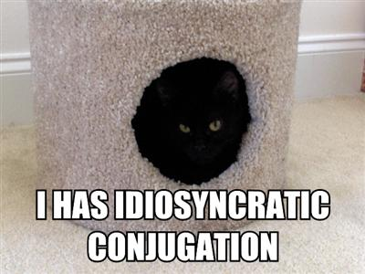 lolcats-i-has-idiosyncratic-conjugation