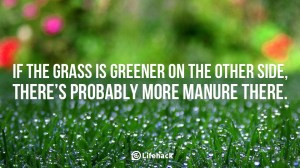 If-the-grass-is-greener-on-the-other-side-there-is-probably-more-manure-there.