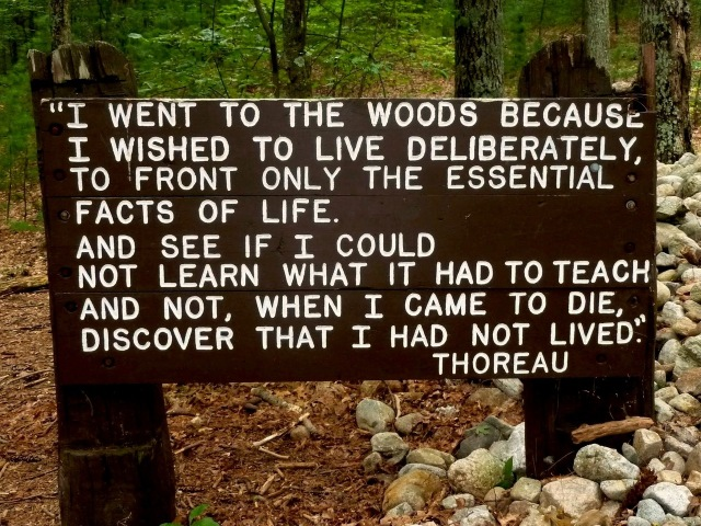 Walden Quote