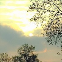 sunset.golden