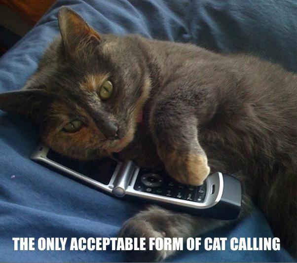 catcalling-meme-1424261642