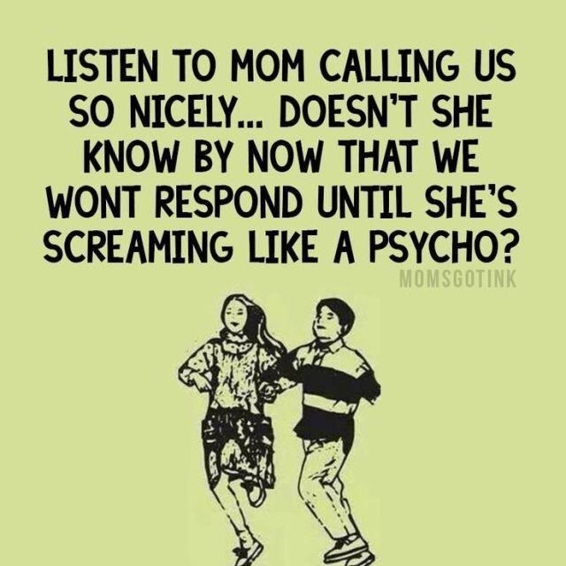 c199dd227690ba40adfa5defb58c6208--raising-kids-humor-mother-quotes-funny