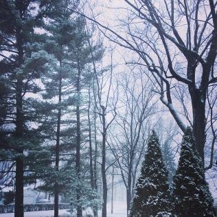yaaasss, snow, yaaasss